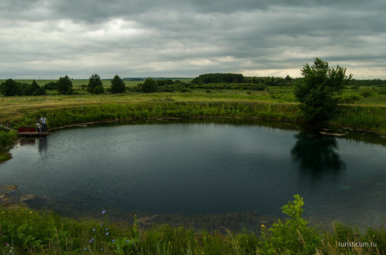 большой картинки озера самарской области фотографии ваших питомцев