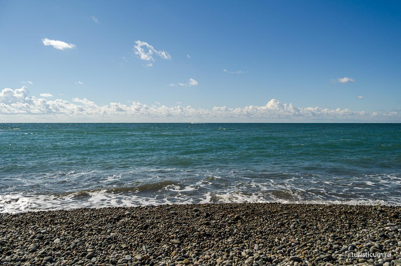 фотографии пляжей адлера артишок